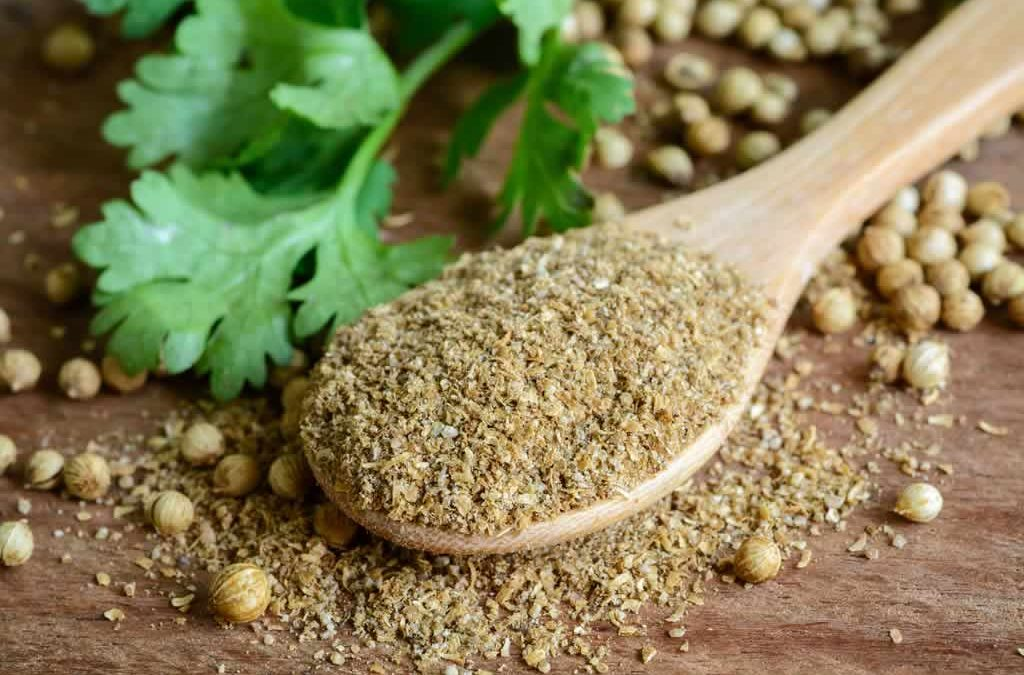 Genesis SK Ltd is a global supplier of Coriander seeds - ground - low aroma
